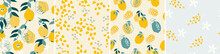 Set Of Artistic Seamless Pattern With Abstract Flowers, Shapes, Leaves, Lemons And Pears In Yellow And Blue. Vector Illustration.