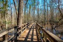 Boardwalk Across The Swamp And Seventeen Mile River In General Coffee State Park, Georiga