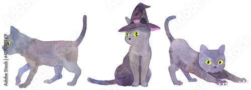 Stampa su Tela 3匹の黒猫 魔女の帽子 ハロウィーン 水彩