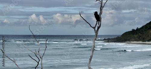 Canvastavla Natural Byron Bay lifestyle