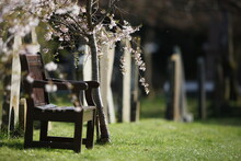 Wooden Bench In A Churchyard Overlooking Grave Stones In Spring