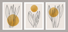 Set Of Minimalist Botanical Line Art Composition With Leaves Abstract Collage