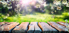 Spring Table With Trees In Blooming And Defocused Sunny Garden In Background