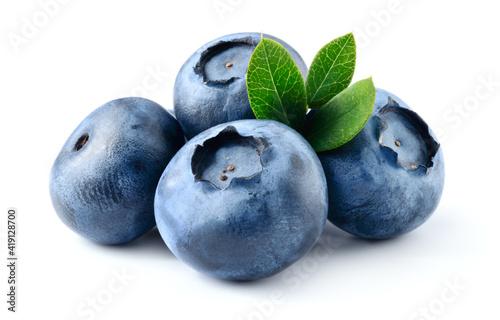 Blueberry isolated Fototapeta