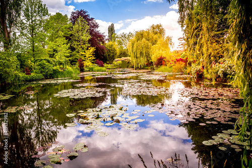 Obraz na plátně Pond, trees, and waterlilies in a french garden