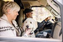 Couple With Dog Driving RV