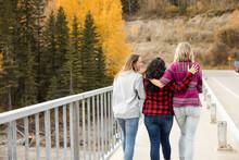 Women Walking Over Bridge In Forest