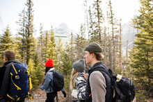 Group Of People Hiking In Forest