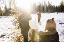 Woman Taking Photo Of Family Choosing Christmas Tree In Forest