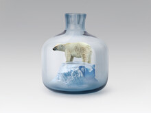 Polar Bear In Jar With Melting Ice