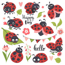 Cute Ladybird Set, Funny Little Insect Collection. Hand Drawn Vector Illustration