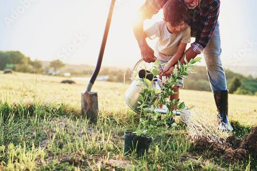 Fotografia Grandfather and grandson planting a tree