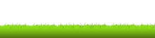 Realistic Green Vector Grass Meadow On White Background. Easter Concept: Spring, Easter, Holiday. Vector Illustration EPS 10