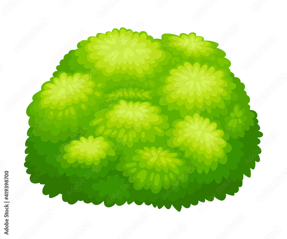 Fototapeta Round Bush as Perennial Woody Plant with Dense Foliage Cover Vector Illustration