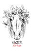 Portrait of a elegant horse. Magical horse - lettering quote. Poster, t-shirt composition, handmade print. Vector illustration.