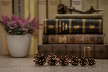 Closeup Shot Of Pine Cones And Vintage Books In The Background