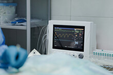 Crop Anonymous Veterinarian In Sterile Gloves Operating Animal Near EKG Test Monitor In Hospital