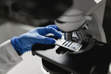 Crop Anonymous Scientist In Protective Gloves Putting Sample Under Microscope Lens While Conducting Chemical Research In Laboratory