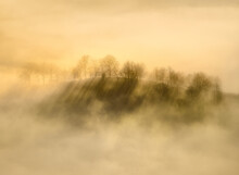 Photography Of A Misty And Sunny Sunrise In The Forest