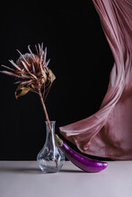 Composition Of Dried Plant In Glass Vase With Eggplant On Table Against Fluttering Curtain On Black Background