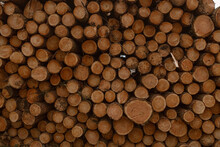 Full Frame Background With Pile Of Wooden Logs Of Different Sizes Stored For Fuel In Countryside