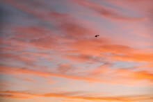 Remote View Of Helicopter Silhouette On Background Of Vivid Sundown Sky Over City In Evening