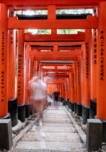 Tourists On The Move Walking Through The Wooden Arches Of Torii In Japan
