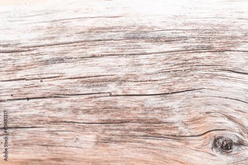 Obraz Jasne piękne drewniane tło, tekstura białego drzewa, pnia ze słojami.  - fototapety do salonu