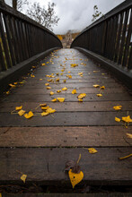 Perspective View Of Narrow Wooden Pedestrian Overpass In Autumn Park Covered With Yellow Fallen Leaves On Overcast Day