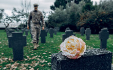 Full Body Of Male Fighter Honoring Memory Of Hero Died During War At Grave With Flower In Cemetery