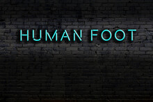 Neon Sign. Word Human Foot Against Brick Wall. Night View