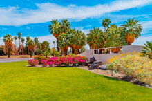 The Entrance To Palm Springs Is Surrounded By Flowers And Palm Trees.