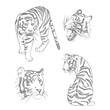 Cztery tygrysy