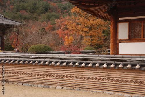 Obraz koreański płot - fototapety do salonu