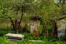 Outbuildings In The Spring Garden