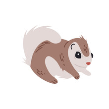 Siberian Flying Squirrel Isolated Vector Illustration. Cute Little Animal Design Element. Japanese Wildlife In Simple Cartoon Style.