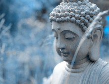Head Of Buddha Statue In The Garden In Blue Tones