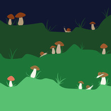 Vector Background With Mushrooms And Snails. Colored Illustration With Isolated Objects.