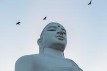 Close-up Of The Giant White Buddha Statue At Sri Maha Bodhi Viharaya, A Buddhist Temple At Bahirawakanda At Sunset Or Sunrise In Kandy, Sri Lanka.