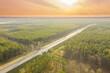Betonowa, dwupasmowa droga w świetle zachodzącego słońca. Zdjęcie z drona.