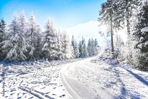 Fototapeta zima las góry śnieg obraz