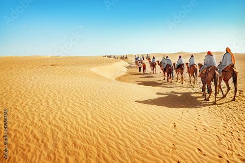 Fotografia camels in the desert