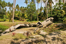 Wreck Of Japanese Fighter Aircraft Crashed In Jungle Vegetation During World War II