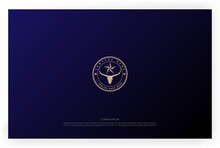 Vintage Texas Star Longhorn Bull Logo Design Vector