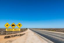 Australia, South Australia, Nullarbor Plain, Warning Sign By Eyre Highway