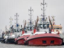 Germany, Hamburg, Row Of Tugboats Moored In Harbor