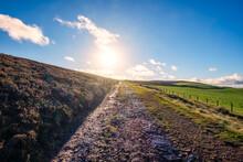 Uk, Scotland, East Lothian, Dirt Road Through Wetland