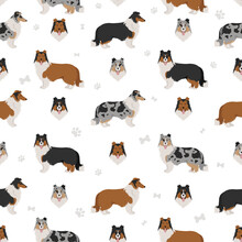 Rough Collie Clipart. Different Poses, Coat Colors Seamless Pattern
