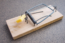Traditional Mousetrap With Cheese. Pest Control At Home.