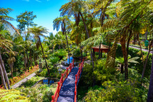Monte Palace - Tropical Garden With Waterfalls, Lakes And Traditional Buildings Above The City Of Funchal - Popular Tourist Destination In Madeira Island, Portugal.